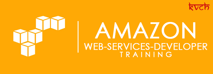 Best Amazon Web Services Developer Associate Training Institute & Certification in Noida