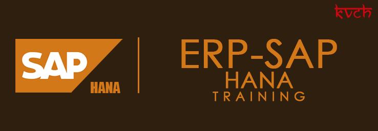 Best ERP HANA Training Noida | ERP HANA Training Institute