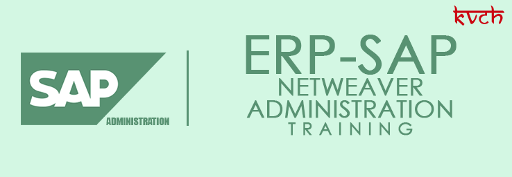 Best ERP NetWeave Administration Training Institute & Certification in Noida