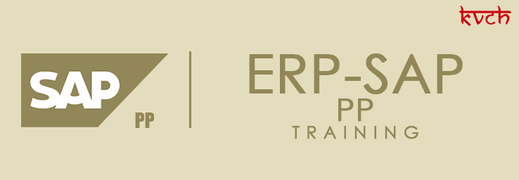 Best ERP PP Training Institute & Certification in Noida