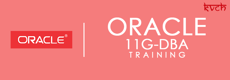 Best Oracle 10g/11g DBA Training Institute & Certification in Noida